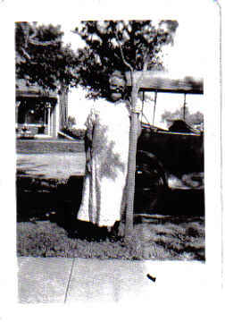 Nellie Daniels