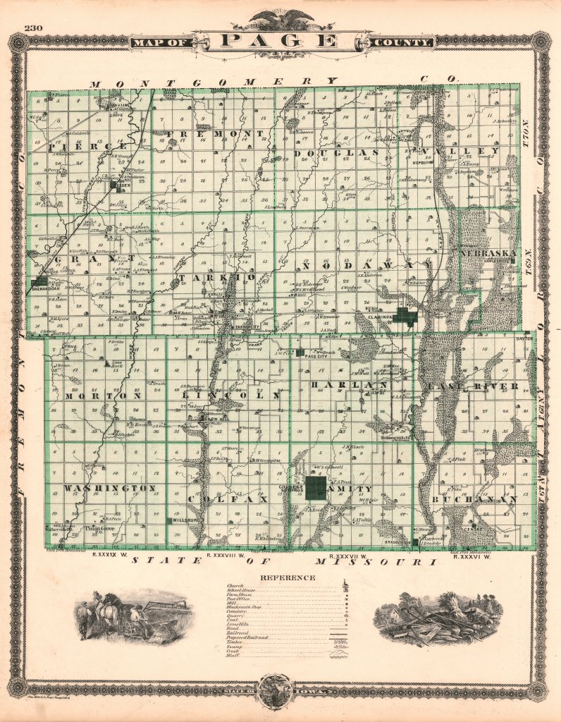 Page County Iowa Page County Iowa 1875 Map
